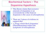 biochemical factors the dopamine hypothesis