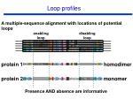 loop profiles