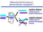 what are the fine tuners of domain domain recognition