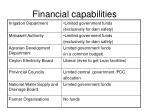 financial capabilities