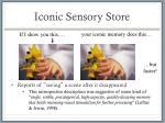 iconic sensory store