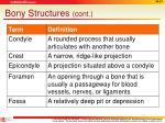 bony structures cont