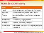 bony structures cont1