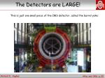 the detectors are large