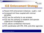 ice enforcement strategy