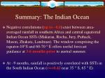 summary the indian ocean
