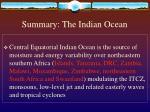 summary the indian ocean1