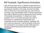 nsf example significance innovation