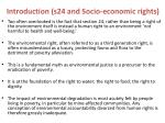 introduction s24 and socio economic rights