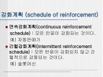 schedule of reinforcement