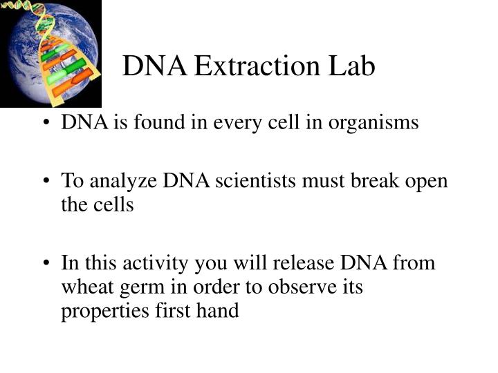 dna extraction lab n.
