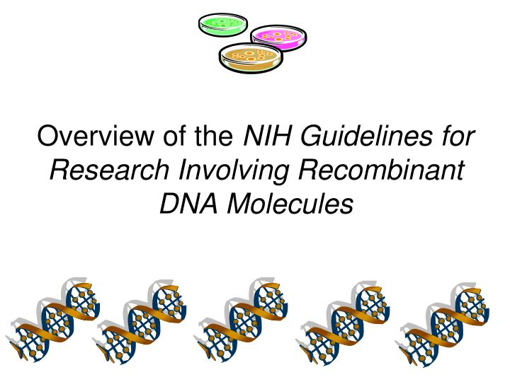 overview of the nih guidelines for research involving recombinant dna molecules n.