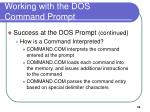 working with the dos command prompt3