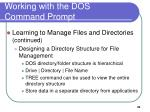 working with the dos command prompt6