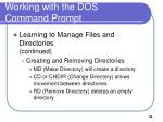 working with the dos command prompt7