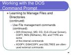 working with the dos command prompt9