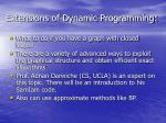 extensions of dynamic programming