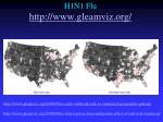 h1n1 flu http www gleamviz org1
