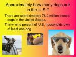 approximately how many dogs are in the u s