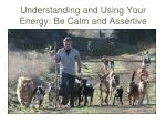 understanding and using your energy be calm and assertive