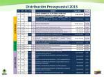 distribuci n presupuestal 2013