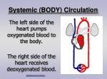 systemic body circulation