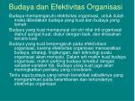 budaya dan efektivitas organisasi