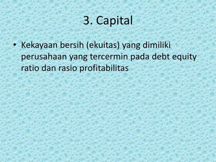 3. Capital