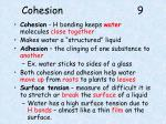 cohesion 9