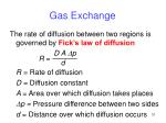 gas exchange1