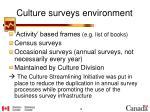 culture surveys environment