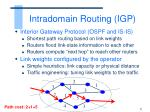 intradomain routing igp