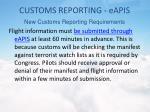 customs reporting eapis2