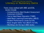 youth and lifelong learning literacy or numeracy gains2