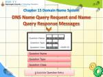 dns name query request and name query response messages3