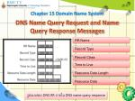 dns name query request and name query response messages5