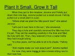 plant it small grow it tall