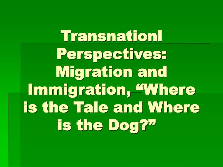 transnationl perspectives migration and immigration where is the tale and where is the dog n.