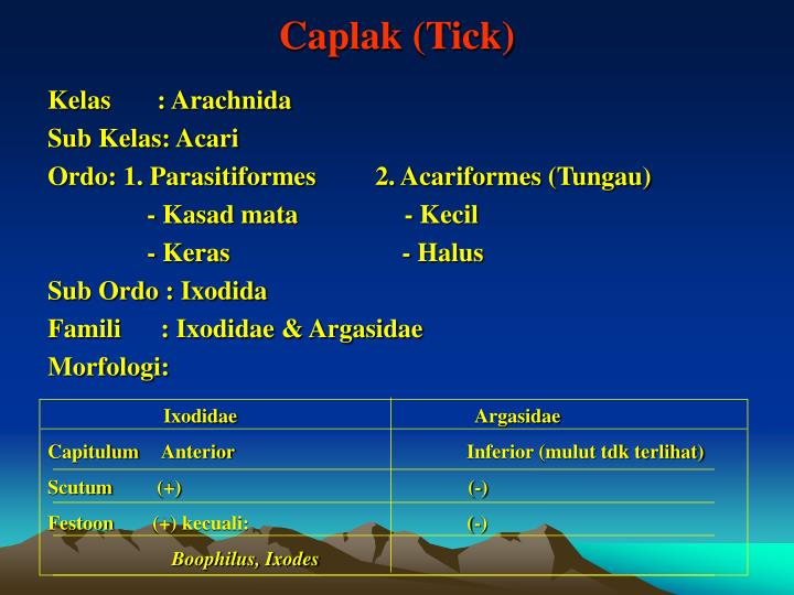 Caplak (Tick)