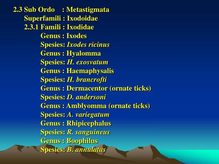 2.3 Sub Ordo    : Metastigmata