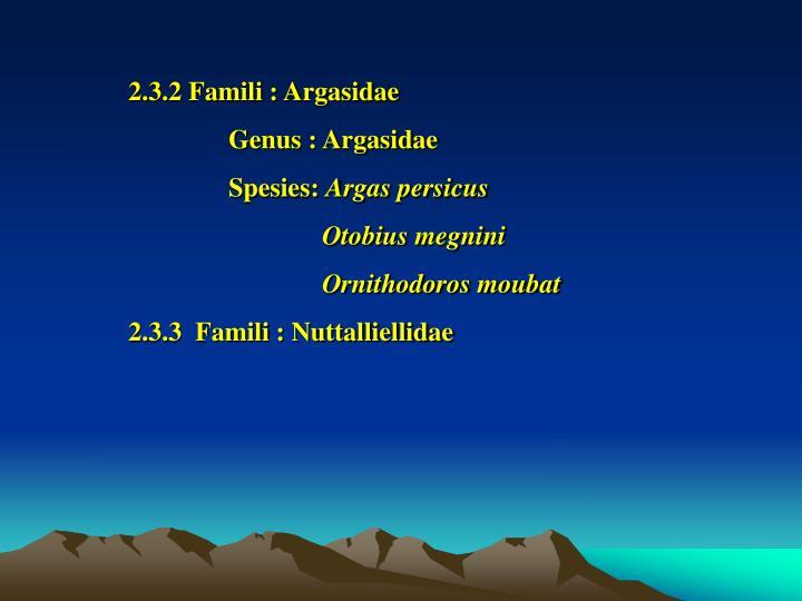 2.3.2 Famili : Argasidae