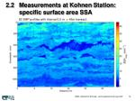 2 2 measurements at kohnen station specific surface area ssa