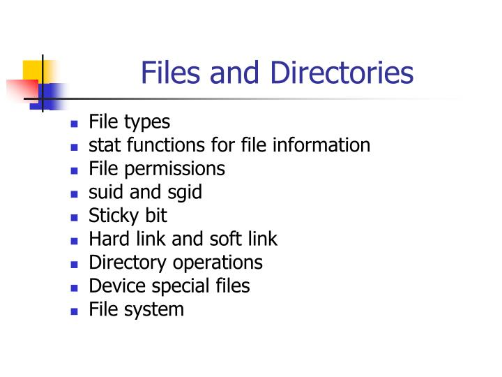 files and directories n.