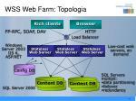 wss web farm topologia