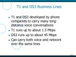 t1 and ds3 business lines
