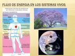 flujo de energia en los sistemas vivos