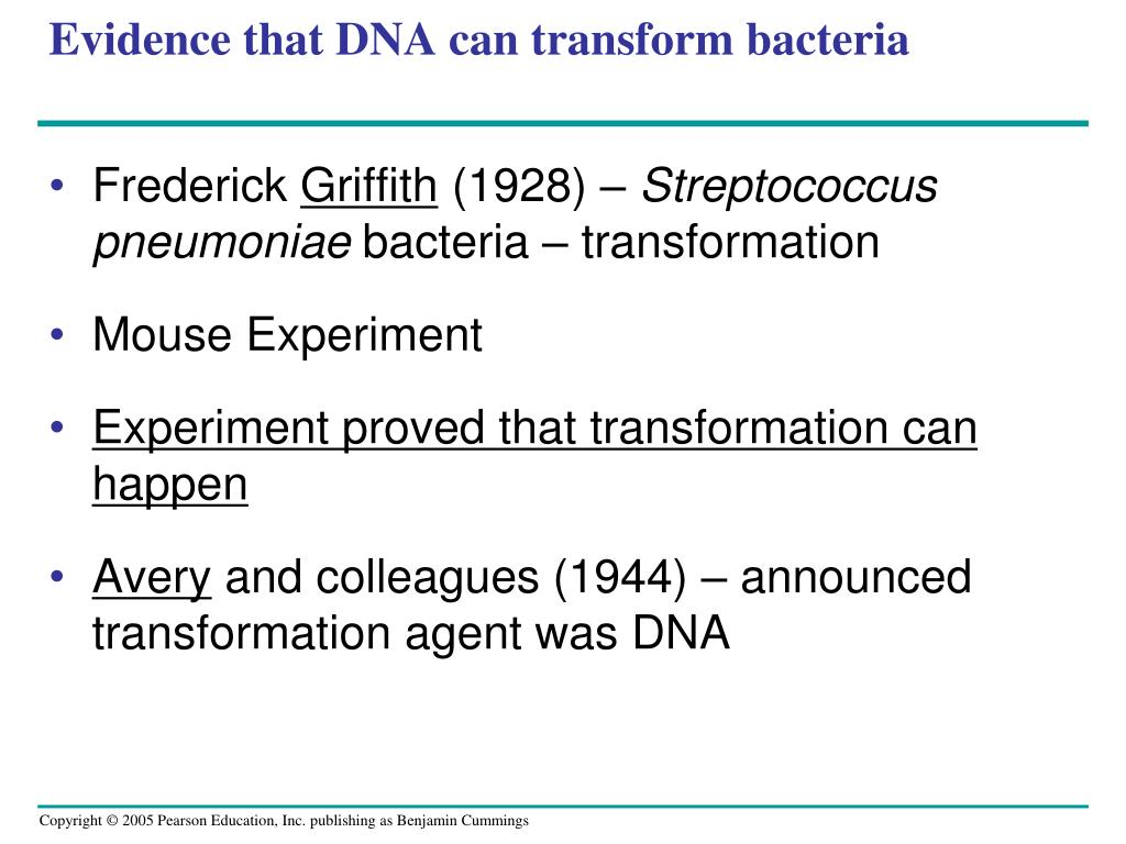 frederick griffith contribution to dna