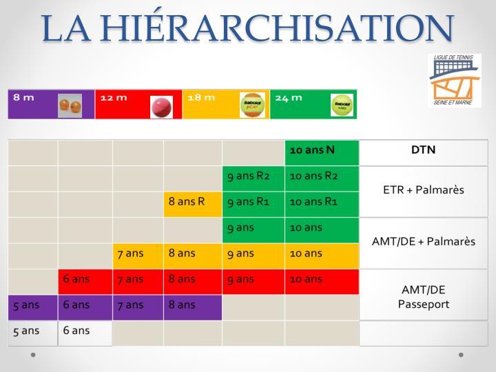 LA HIÉRARCHISATION