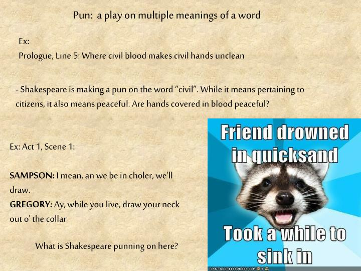 Pun:  a play on multiple meanings of a word