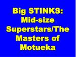 big stinks mid size superstars the masters of motueka